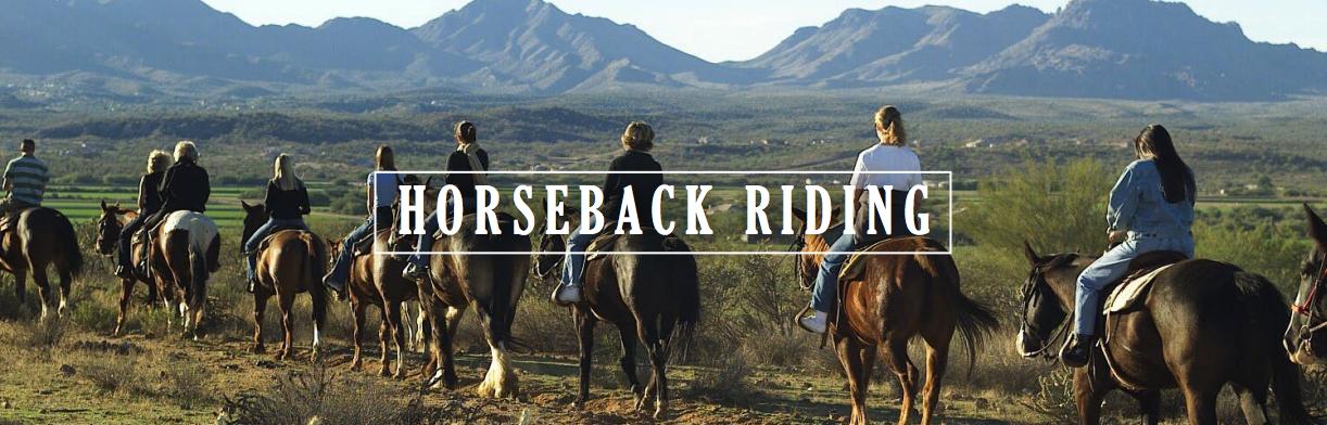 Horseback Riding Long Island NY