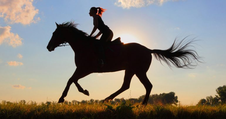 Horseback Riding - Long Island Adventures